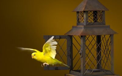ESG: The Canary in the Metal Mine